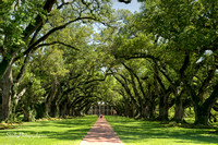 Oak Alley Plantation 2015 04 19 - 0028_29_30