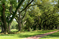 Oak Alley Plantation 2015 04 19 - 0040_1_2