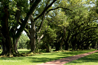 Oak Alley Plantation 2015 04 19 - 0041