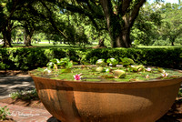 Oak Alley Plantation 2015 04 19 - 0001HDR