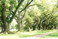Oak Alley Plantation 2015 04 19 - 0042