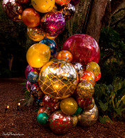 Chihuly at Fairchild Gardens  2015 01 08 - 0101
