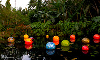 Chihuly at Fairchild Gardens  2015 01 08 - 0078