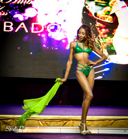 Miss Caribbean United Pageant  2017 04 29  - 0621