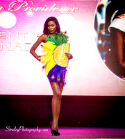 Miss Caribbean United Pageant  2017 04 29  - 0669