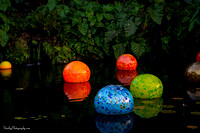 Chihuly at Fairchild Gardens  2015 01 08 - 0073