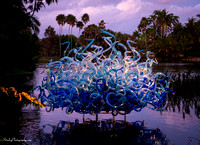 Chihuly at Fairchild Gardens  2015 01 08 - 0135