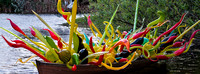 Chihuly at Fairchild Gardens  2015 01 08 - 0031
